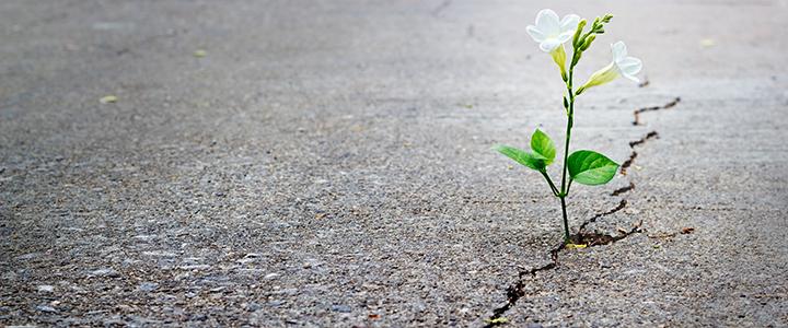 「悩み」に隠された本当の願いの見つけ方